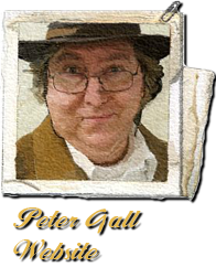 Peter Gall Website (in Flash)